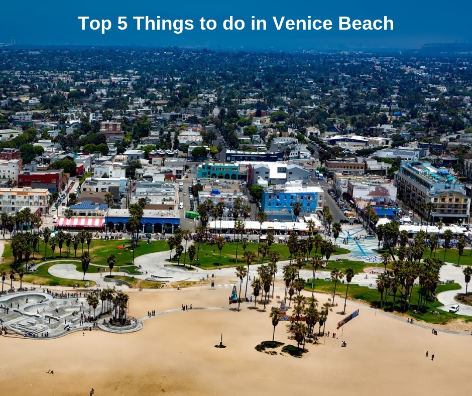 Top 5 Things to do in Venice Beach